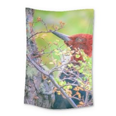 Woodpecker At Forest Pecking Tree, Patagonia, Argentina Small Tapestry by dflcprints