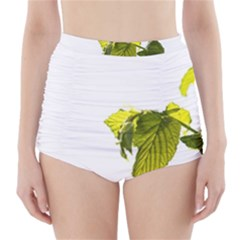 Leaves Nature High Waisted Bikini Bottoms
