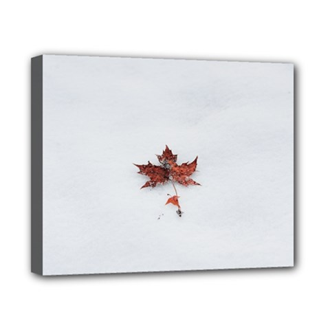 Winter Maple Minimalist Simple Canvas 10  X 8  by Nexatart