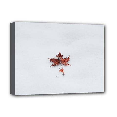 Winter Maple Minimalist Simple Deluxe Canvas 16  X 12