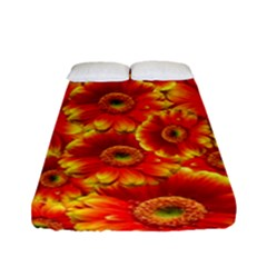 Gerbera Flowers Nature Plant Fitted Sheet (full/ Double Size)