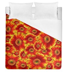 Gerbera Flowers Nature Plant Duvet Cover (queen Size) by Nexatart