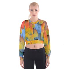 Spring Parrot Parrot Feathers Ara Cropped Sweatshirt