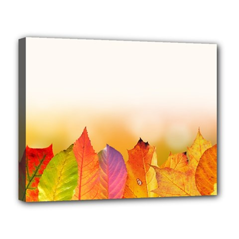 Autumn Leaves Colorful Fall Foliage Canvas 14  X 11  by Nexatart