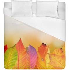 Autumn Leaves Colorful Fall Foliage Duvet Cover (king Size)