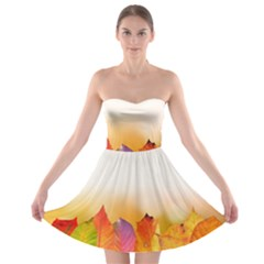 Autumn Leaves Colorful Fall Foliage Strapless Bra Top Dress