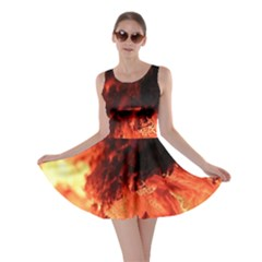 Fire Log Heat Texture Skater Dress