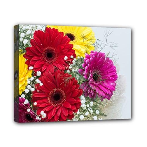 Flowers Gerbera Floral Spring Canvas 10  X 8  by Nexatart