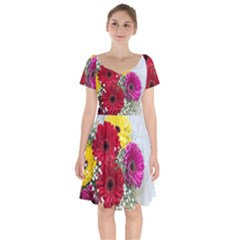 Flowers Gerbera Floral Spring Short Sleeve Bardot Dress