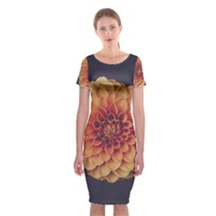 Art Beautiful Bloom Blossom Bright Classic Short Sleeve Midi Dress