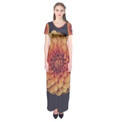 Art Beautiful Bloom Blossom Bright Short Sleeve Maxi Dress