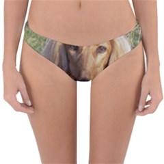 Saluki Reversible Hipster Bikini Bottoms by TailWags