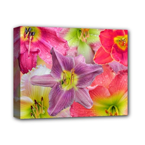 Wonderful Floral 22a Deluxe Canvas 14  X 11  by MoreColorsinLife