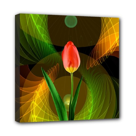 Tulip Flower Background Nebulous Mini Canvas 8  X 8  by Nexatart