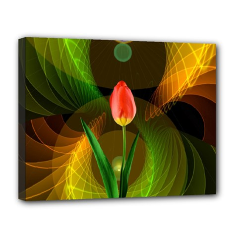 Tulip Flower Background Nebulous Canvas 14  X 11