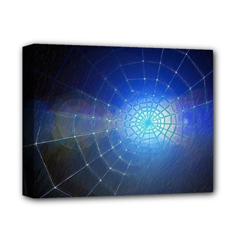Network Cobweb Networking Bill Deluxe Canvas 14  X 11  by Nexatart