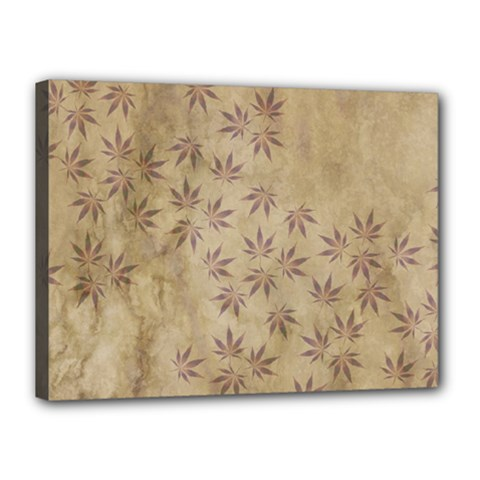 Parchment Paper Old Leaves Leaf Canvas 16  X 12  by Nexatart
