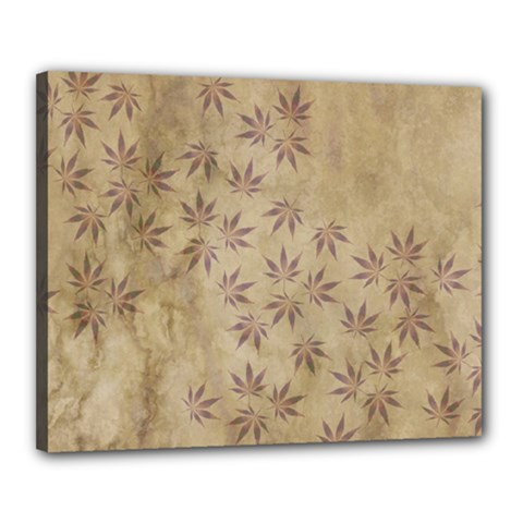 Parchment Paper Old Leaves Leaf Canvas 20  X 16  by Nexatart