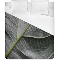 Leaf Detail Macro Of A Leaf Duvet Cover (california King Size) by Nexatart