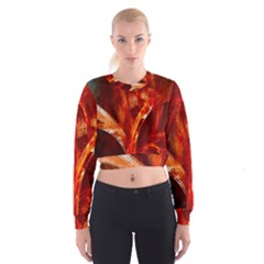 Red Abstract Pattern Texture Cropped Sweatshirt