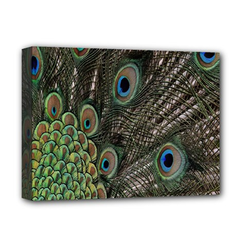 Close Up Of Peacock Feathers Deluxe Canvas 16  X 12   by Nexatart