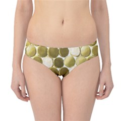 Cleopatras Gold Hipster Bikini Bottoms by psweetsdesign