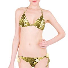 Color020a Bikini by psweetsdesign
