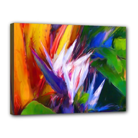 Palms02 Canvas 16  X 12  by psweetsdesign