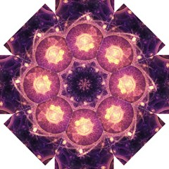 A Gold And Royal Purple Fractal Map Of The Stars Straight Umbrellas by beautifulfractals