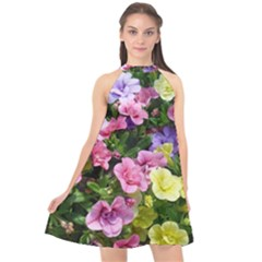 Lovely Flowers 17 Halter Neckline Chiffon Dress  by MoreColorsinLife