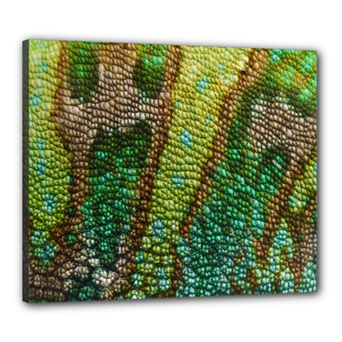 Chameleon Skin Texture Canvas 24  X 20  by BangZart