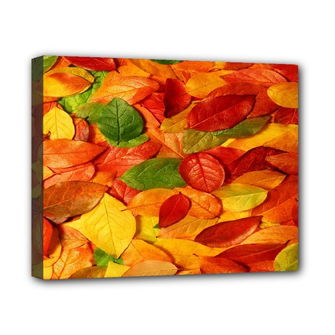 Leaves Texture Canvas 10  X 8  by BangZart