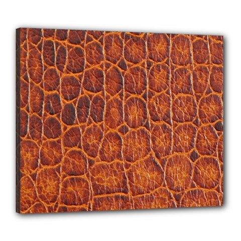 Crocodile Skin Texture Canvas 24  X 20