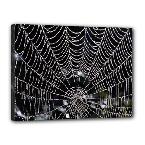 Spider Web Wallpaper 14 Canvas 16  X 12  by BangZart