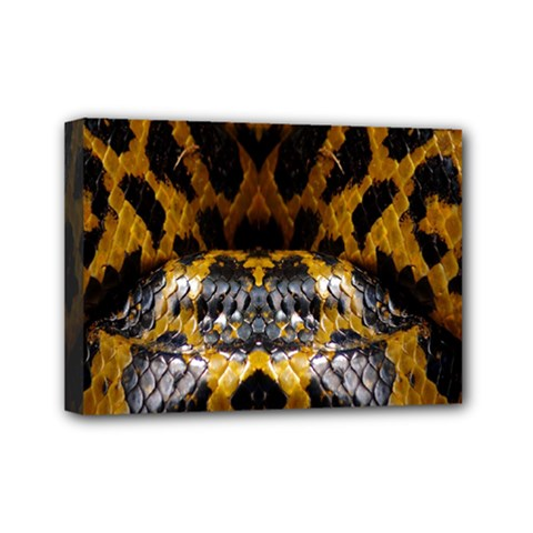 Textures Snake Skin Patterns Mini Canvas 7  X 5
