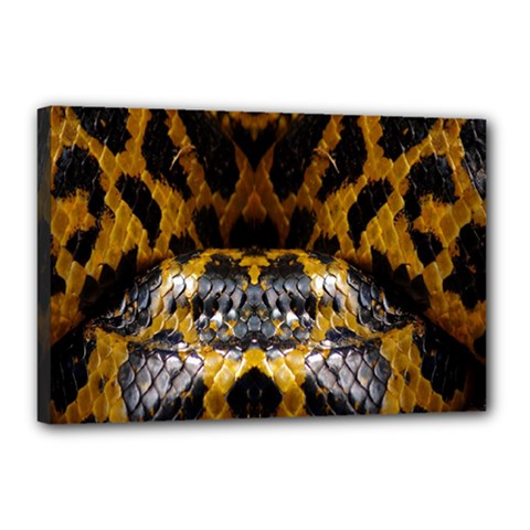 Textures Snake Skin Patterns Canvas 18  X 12