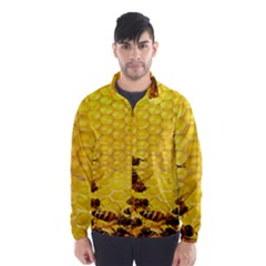 Sweden Honey Wind Breaker (men)