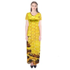 Sweden Honey Short Sleeve Maxi Dress