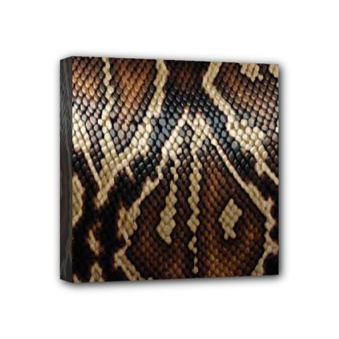 Snake Skin O Lay Mini Canvas 4  X 4
