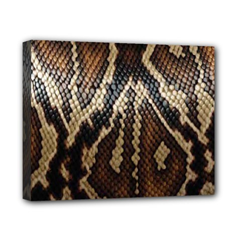 Snake Skin O Lay Canvas 10  X 8  by BangZart