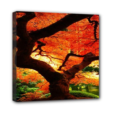 Maple Tree Nice Mini Canvas 8  X 8  by BangZart