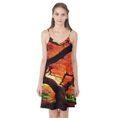 Maple Tree Nice Camis Nightgown