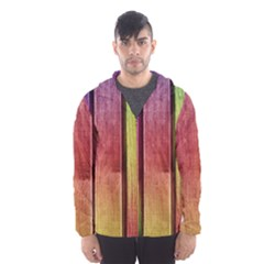 Colourful Wood Painting Hooded Wind Breaker (men)