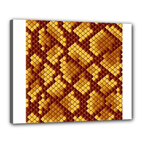 Snake Skin Pattern Vector Canvas 20  X 16  by BangZart