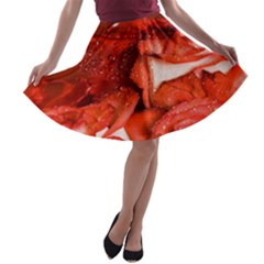 Nice Rose With Water A Line Skater Skirt