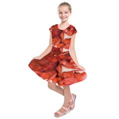 Nice Rose With Water Kids  Short Sleeve Dress
