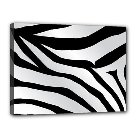 White Tiger Skin Canvas 16  X 12