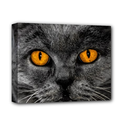 Cat Eyes Background Image Hypnosis Deluxe Canvas 14  X 11  by BangZart