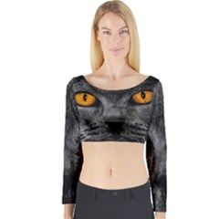 Cat Eyes Background Image Hypnosis Long Sleeve Crop Top