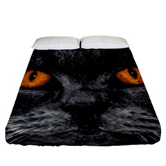 Cat Eyes Background Image Hypnosis Fitted Sheet (california King Size) by BangZart